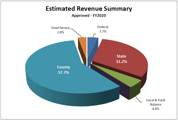 2020 Revenue County 58%, Food Service 3.0%, Federal 3.6%, State 30.7%, Local/Fund Balance 4.6%, Restricted/Other 0.1%