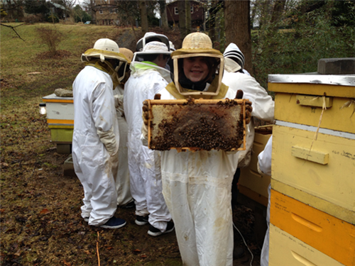 8th grade STEM students from Lindale exploring the importance of pollinators at the Sweet BEE Apiary.